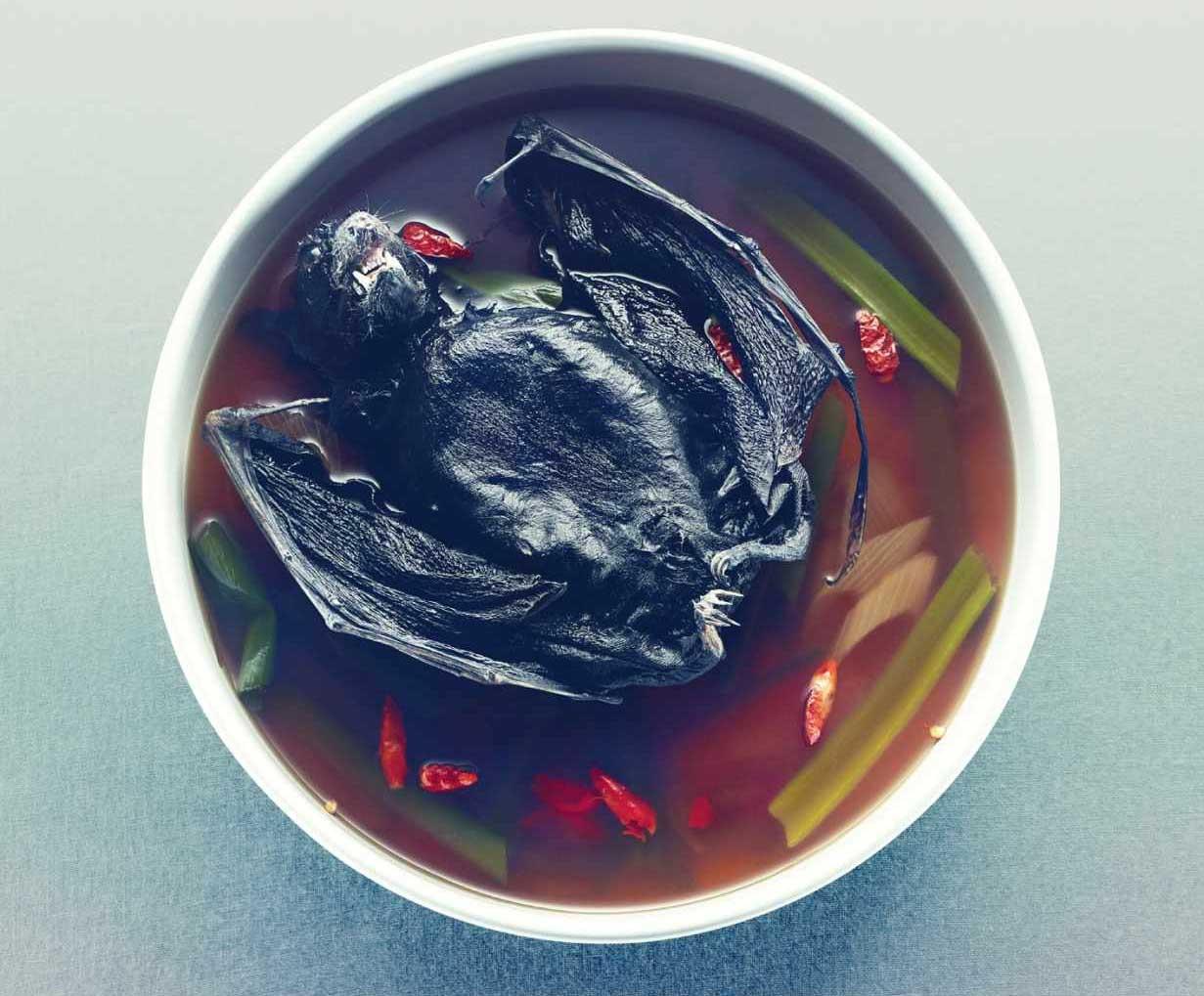 Phát khiếp với đặc sản súp dơi nguyên con - 7