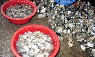 Canh hà biển nấu chua lạ miệng, bổ dưỡng - 1